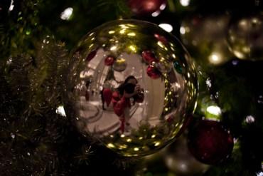 Self-reflection (Christmas, 2010)