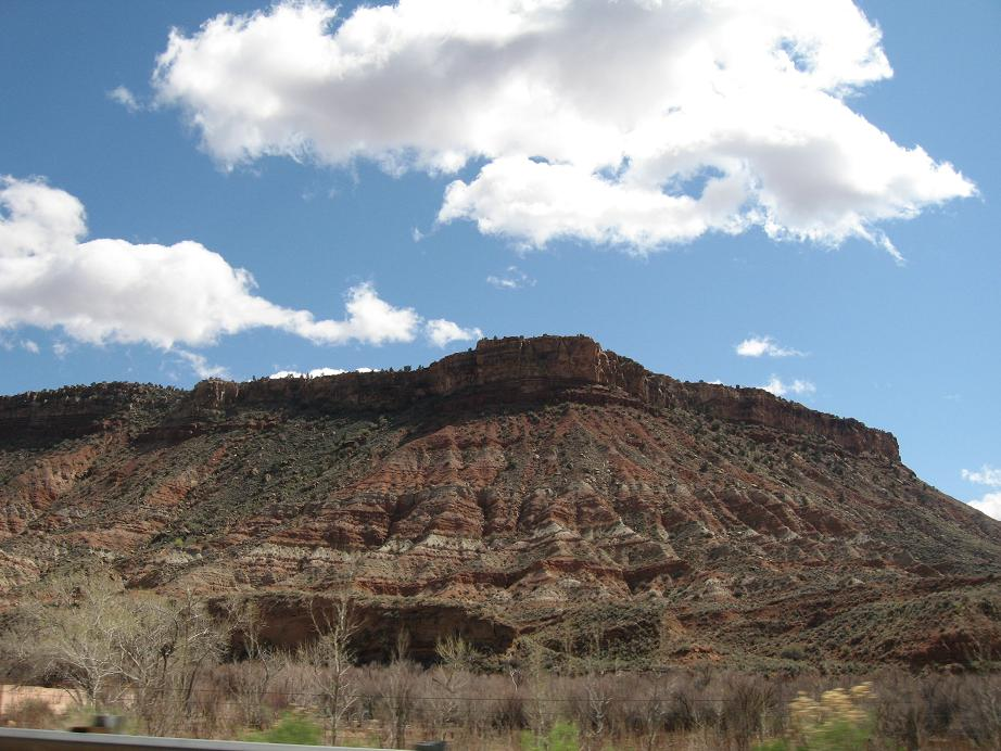 one of many zion national park