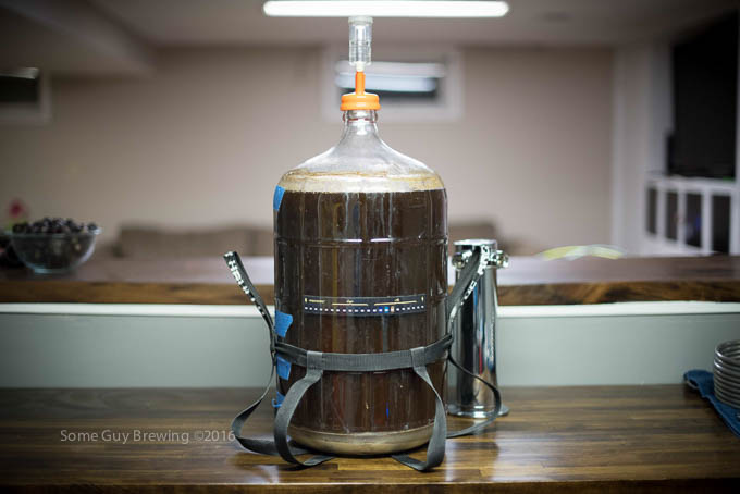Carboy of Brown Ale