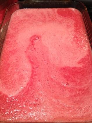 Frozen Delights {Watermelon Slush}