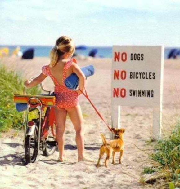 Sem cachoros bicicletas e natação