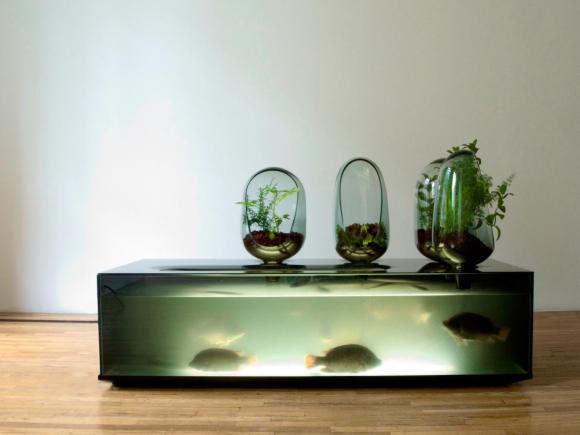 Aquário com Vasos: Sistema integrado com aquário e vasos