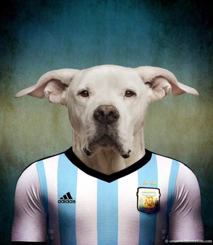 caes-selecao-argentina