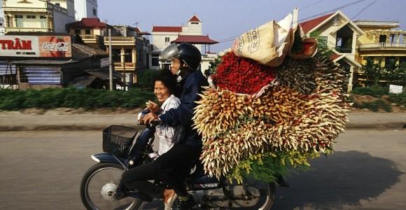 Causando inveja nas formigas, essas motos carregam mais carga do que poderíamos imaginar