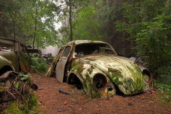 chatillon-car-graveyard-abandoned-cars-vehicle-cemetery-rosanne-de-lange-1[1]