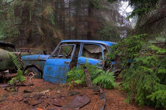 chatillon-car-graveyard-abandoned-cars-vehicle-cemetery-rosanne-de-lange-5[1]