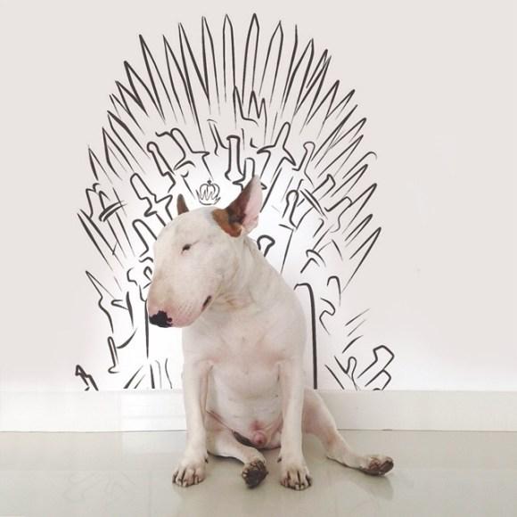 Cães e desenhos (11)