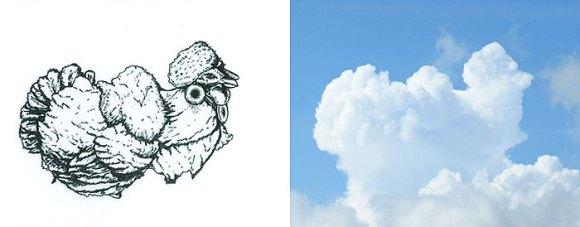 Desenho em nuvens - galinha (2)