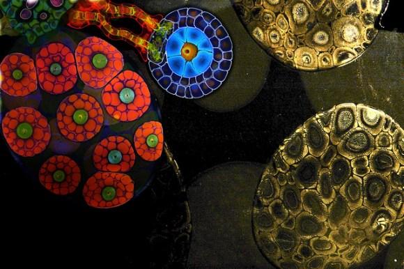 arte colorida e hipnotizante (6)