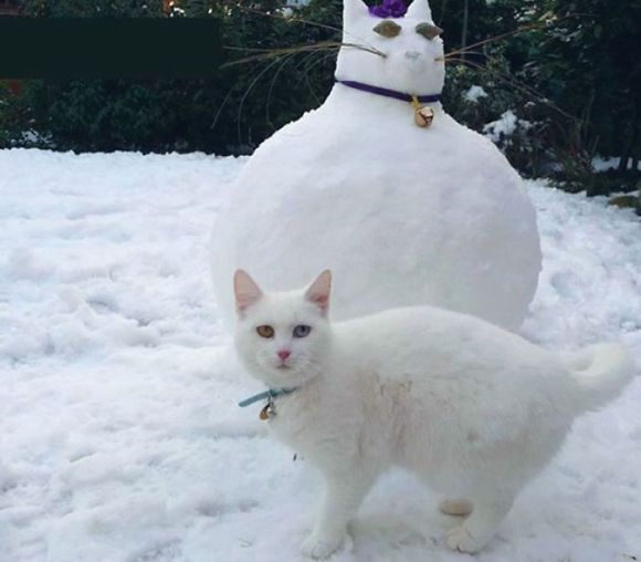 Animais de neve 6
