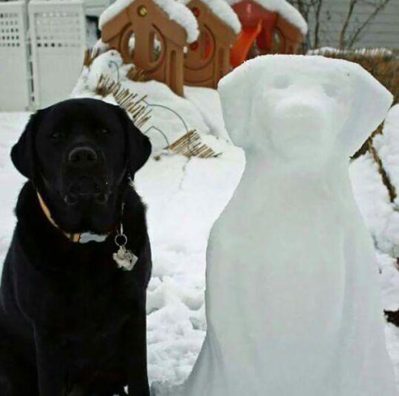 Animais de neve 8
