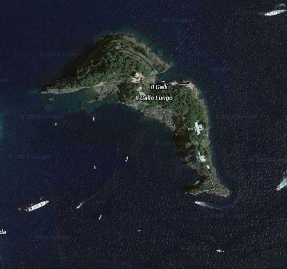 Ilha-golfinho