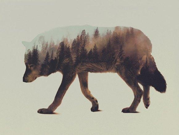Fotos de dupla exposição - animais e floresta 2