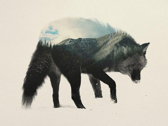 Fotos de dupla exposição - animais e floresta 4