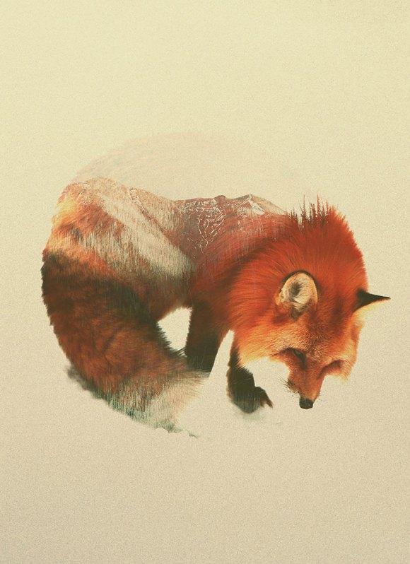 Fotos de dupla exposição - animais e floresta 8