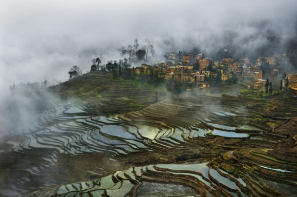 Campos de arroz chineses 5
