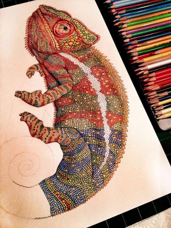 Desenho de lagarto 10
