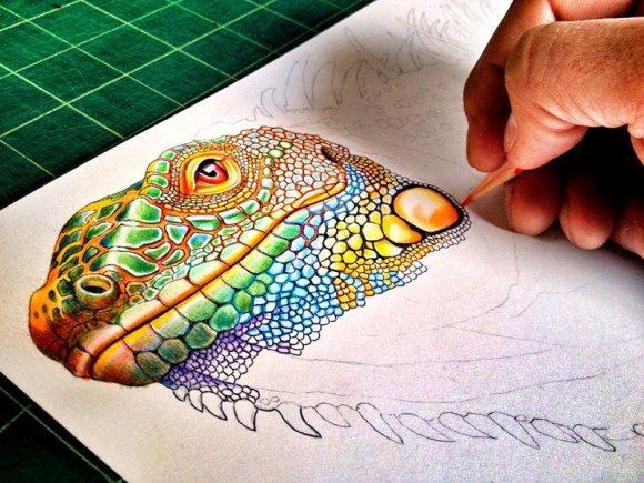 Desenho de lagarto 3