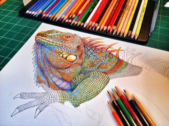 Desenho de lagarto 4