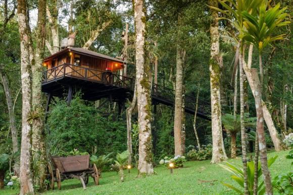 Casa na Árvore em Monte Verde (MG)