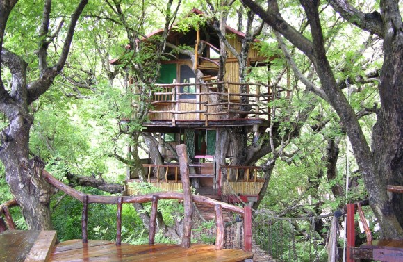 Sanya Nanshan Treehouse – China.