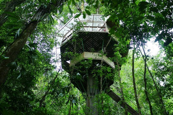 Finca Bellavista – Costa Rica.