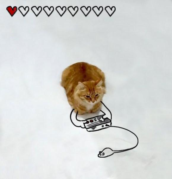 Desenhos sobre a foto de um gato 16 - Hasret Sayın