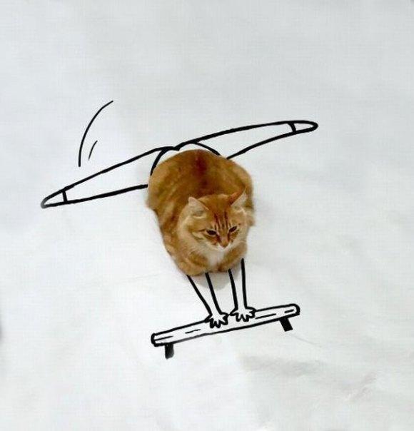 Desenhos sobre a foto de um gato 4 - Sofia
