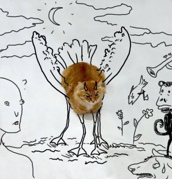 Desenhos sobre a foto de um gato 9 - Wanda Mitrović