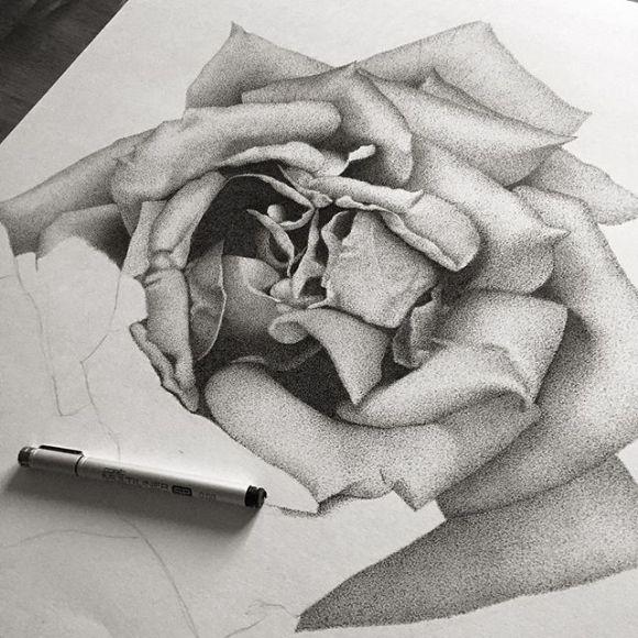 Rosa por fazer