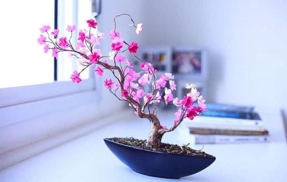 Bonsai rosa sobre a mesa