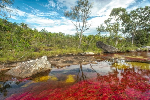 Rio com vermelho e amarelo