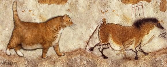 Gato rupestre