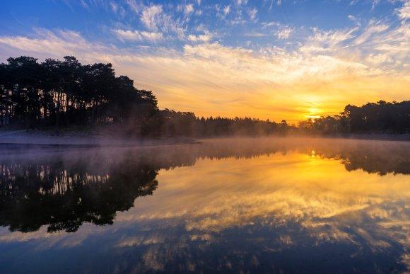 Por do sol refletido na água com árvores beirando o lago