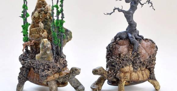 Essas tartarugas decorativas são ideais para quem gosta de contos de fadas