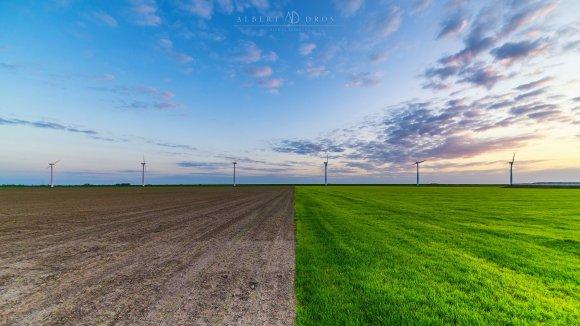Moinhos de energia eólica ao fundo e metade da imagem com grama, outra metade desmatada