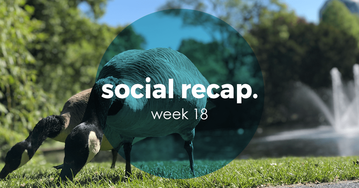 The Social Recap; week 18