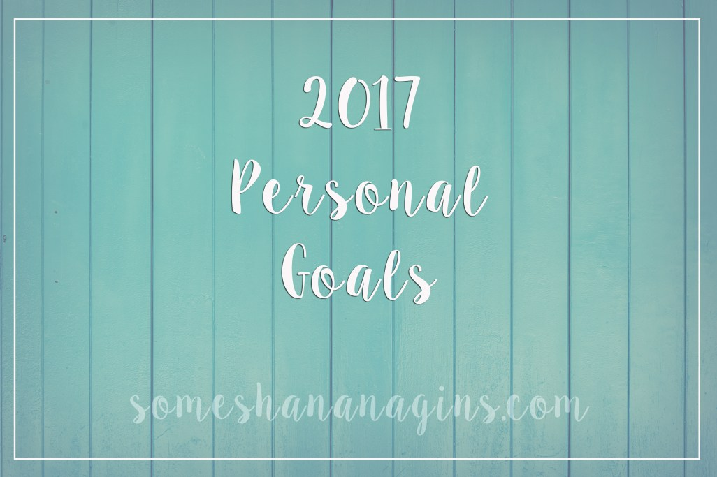 2017 Personal Goals - Some Shananagins