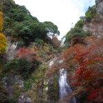 大阪で人気の紅葉スポット「箕面の滝」へ行って来ました!