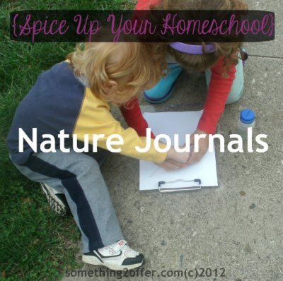 spice up your homeschool nature journals