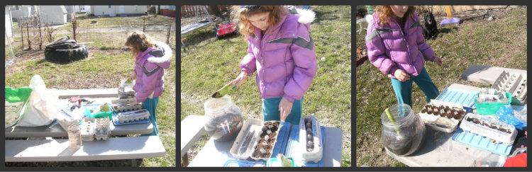 egg carton gardening