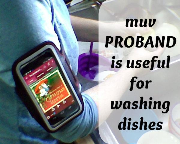 armband dishes