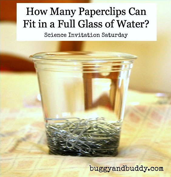 how-many-paperclips1