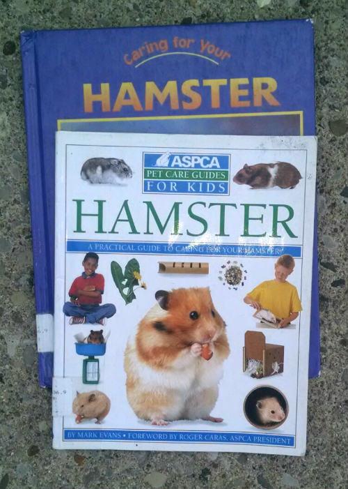 hamster books