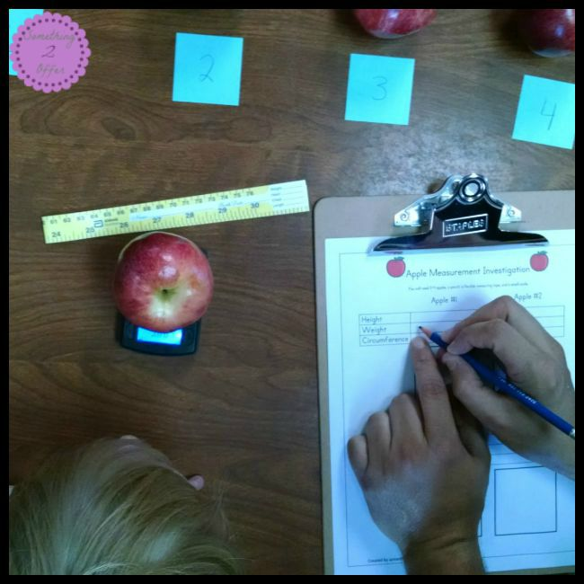 Apple STEM weight