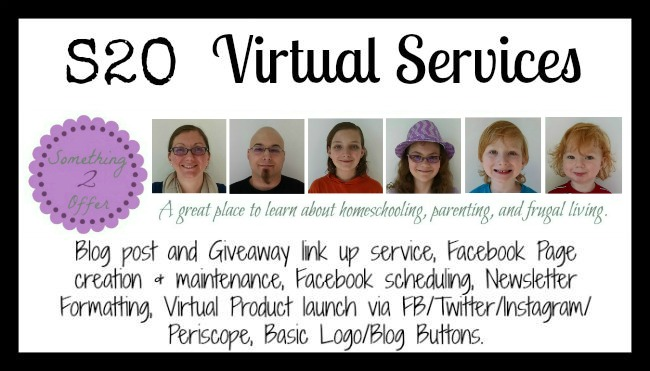 S2O Virtual Services header