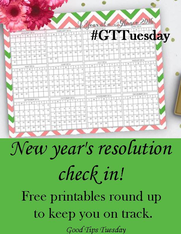 New Year's Resolution Check in printables