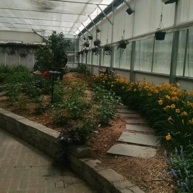 Butterfly House path