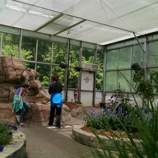 Butterfly House weather