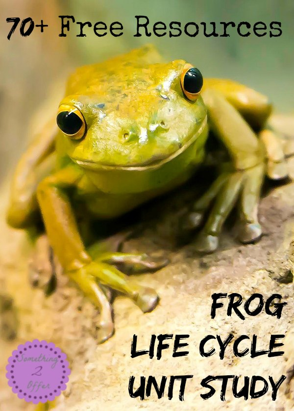 Free Resources Frog Life Cycle Unit Study